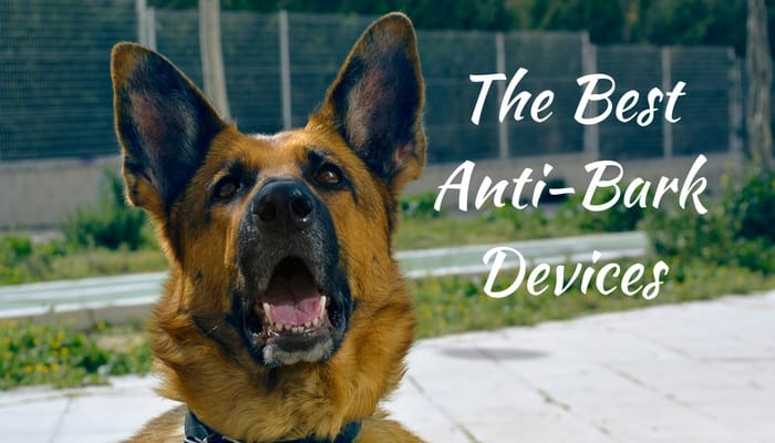 Best Anti Barking Device