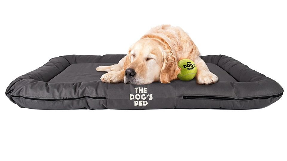How to Choose a Best Waterproof Dog Bed