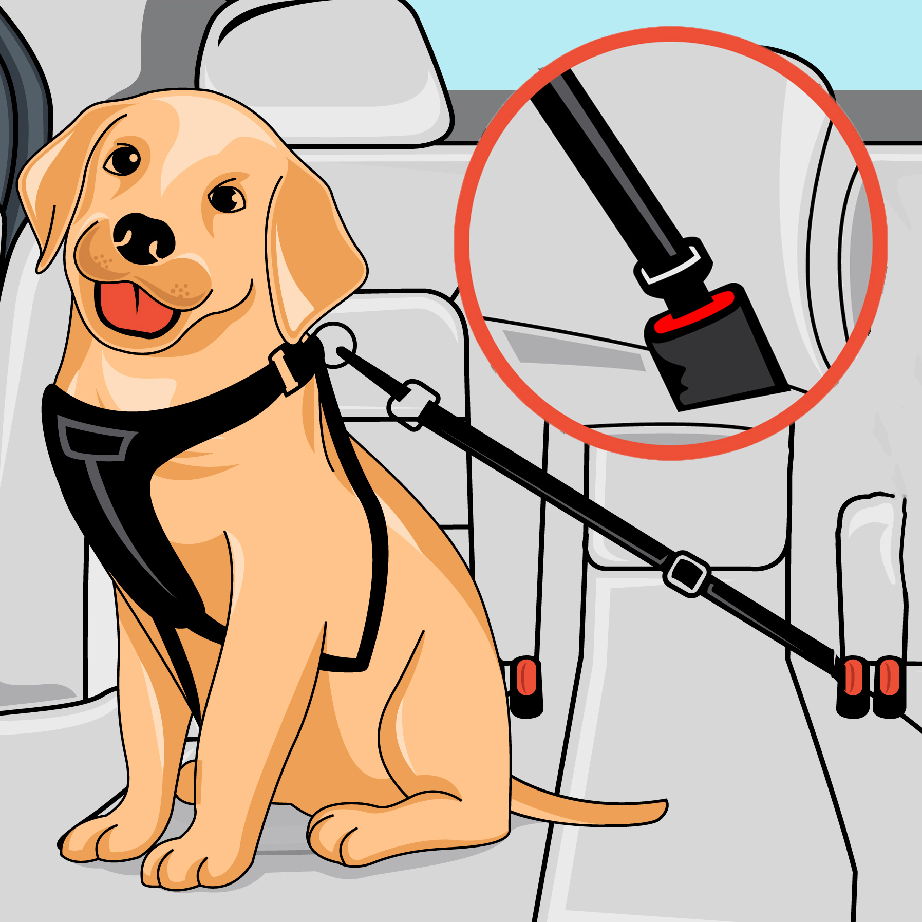 PawSafe Seatbelt Review