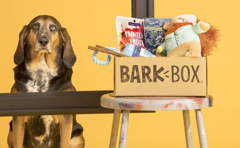 What's in a BarkBox?